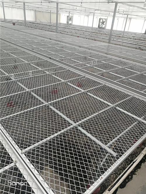 航迪鋼板網移動苗床邀您參加上海國際花卉展覽會