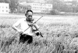 在稻田邊乘涼