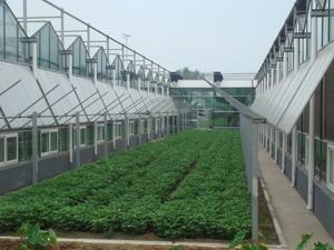 奥农苑温室大棚湿帘外翻窗系统安装
